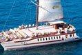 SuperCat Catamaran avistamiento de delfines y Ballenas